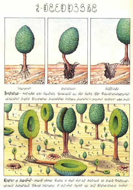 One page of the Codex (trees)