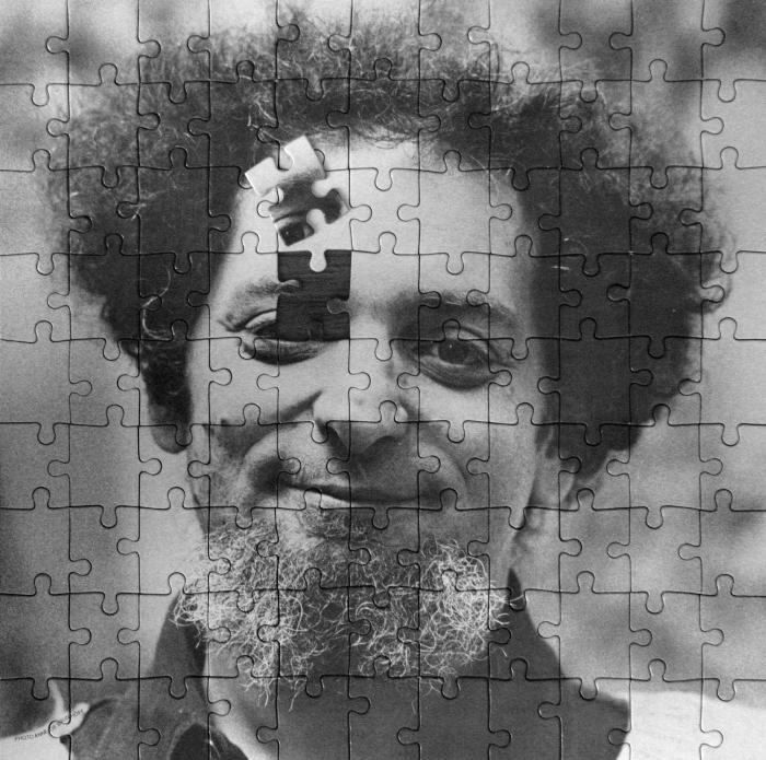Georges Perec Jigsaw