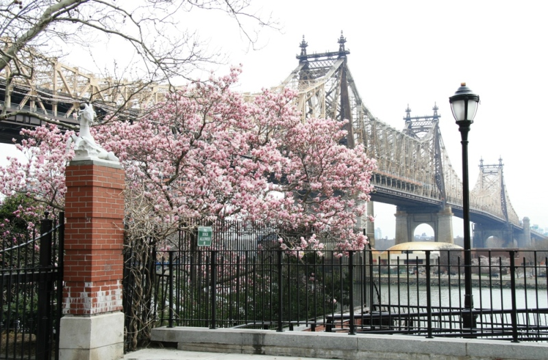 Queensboro bridge, Upper East side, Manhattan