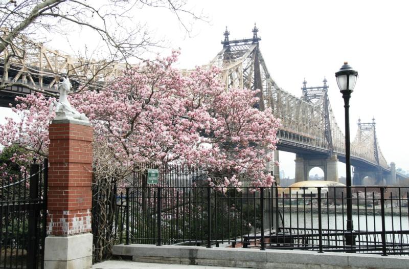 Queensboro bridge, Upper East side, Manhattan