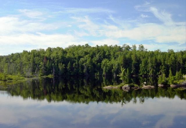 Saint-Alexis-des-Monts, Québec — July 2005